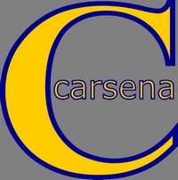 Carsena Technology Services
